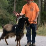 man in bright shirt with goat